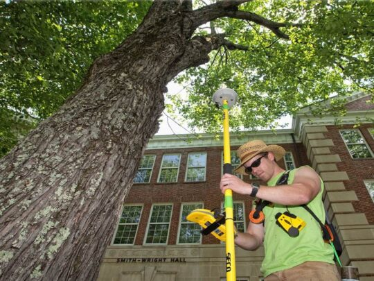 Arborist Consultations-Kendall FL Tree Trimming and Stump Grinding Services-We Offer Tree Trimming Services, Tree Removal, Tree Pruning, Tree Cutting, Residential and Commercial Tree Trimming Services, Storm Damage, Emergency Tree Removal, Land Clearing, Tree Companies, Tree Care Service, Stump Grinding, and we're the Best Tree Trimming Company Near You Guaranteed!