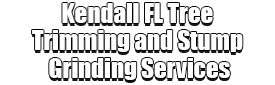Kendall FL Tree Trimming and Stump Grinding Services