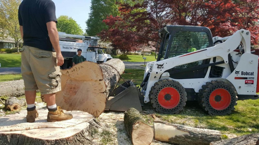 Services-Kendall FL Tree Trimming and Stump Grinding Services-We Offer Tree Trimming Services, Tree Removal, Tree Pruning, Tree Cutting, Residential and Commercial Tree Trimming Services, Storm Damage, Emergency Tree Removal, Land Clearing, Tree Companies, Tree Care Service, Stump Grinding, and we're the Best Tree Trimming Company Near You Guaranteed!