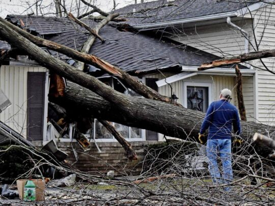 Storm Damage-Kendall FL Tree Trimming and Stump Grinding Services-We Offer Tree Trimming Services, Tree Removal, Tree Pruning, Tree Cutting, Residential and Commercial Tree Trimming Services, Storm Damage, Emergency Tree Removal, Land Clearing, Tree Companies, Tree Care Service, Stump Grinding, and we're the Best Tree Trimming Company Near You Guaranteed!